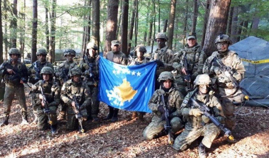 Ligjet për formimin e Ushtrisë së Kosovës dhe kushtetutshmëria e tyre