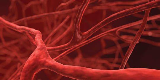 Simptomat që tregojnë se keni probleme me qarkullimin e gjakut