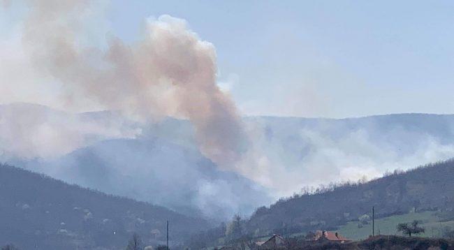 Pyjet e Koshtovës përfshihen nga zjarret (FOTO)