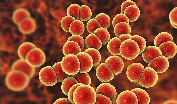 Kosova furnizohet me material për trajtimin e koronavirusit