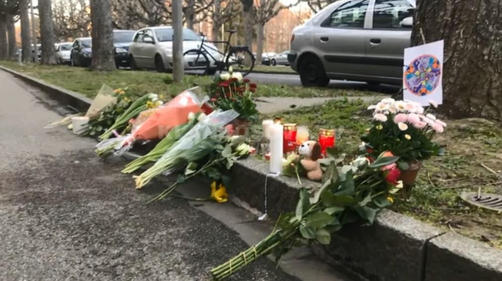 Pronari i banesës flet për 75-vjeçaren zvicerane që e vrau Iliasin