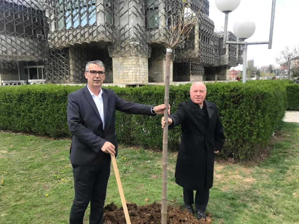 Hoxha dhe prifti mbjellin pemën