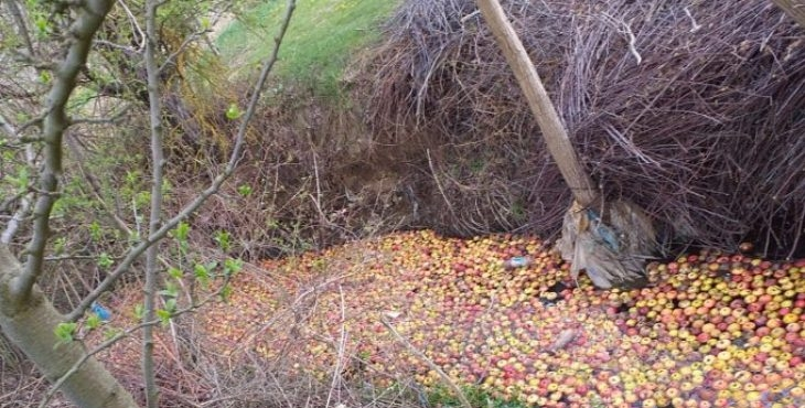Mollat e fermerëve mbushin lumin