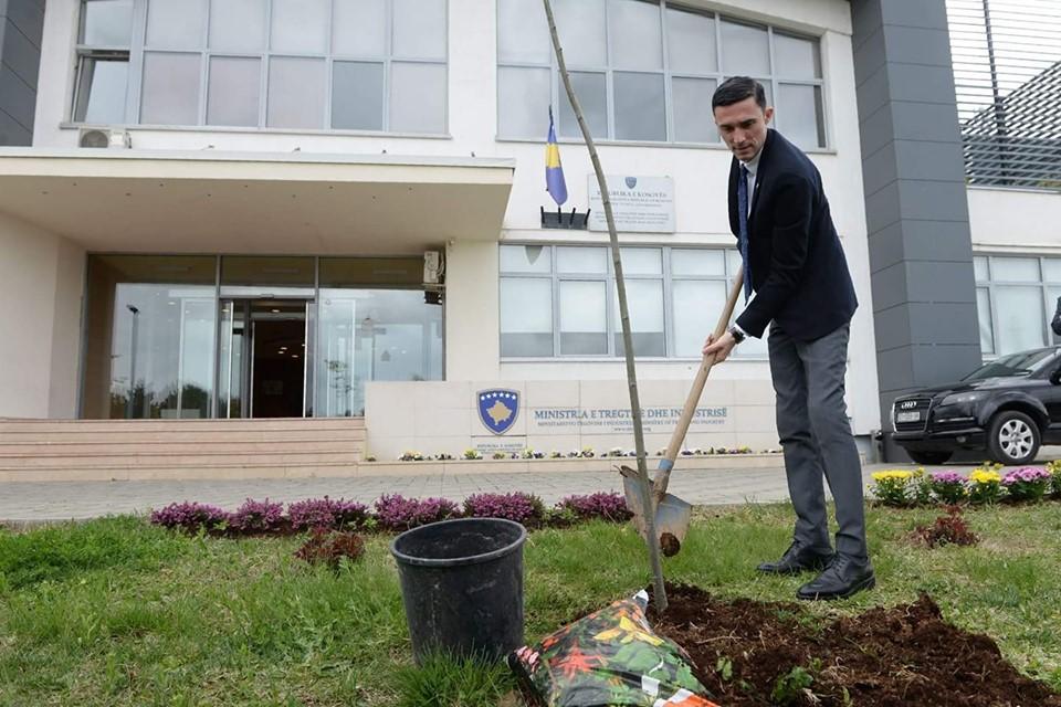 Shala propozon ndalimin e eksportit të masës drurore si lëndë e pa përpunuar nga Kosova