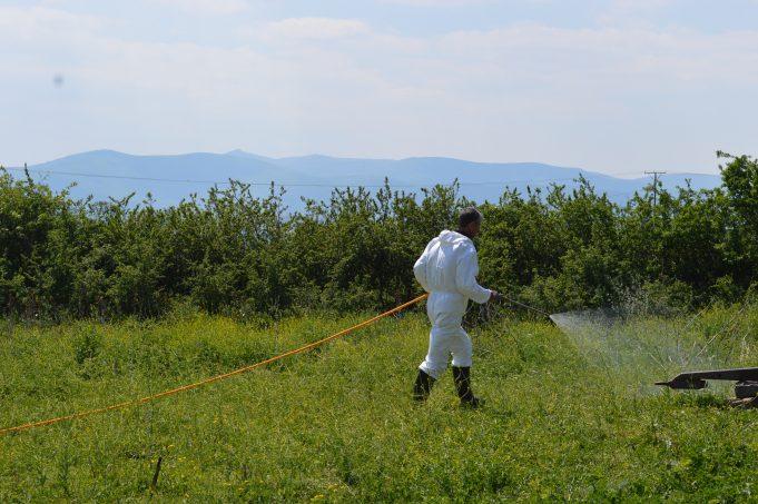 Malishevë, vazhdon zbatimi i masave parandaluese ndaj rriqrave