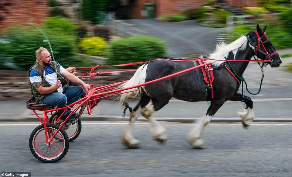 Nga sot nis  festivali i kuajve në Evropë
