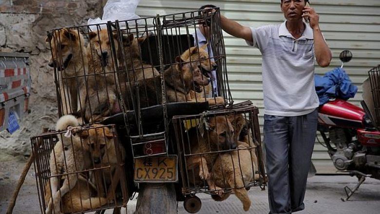 Qyteti britanik ndalon festivalin e ngrënies së mishit të qenit