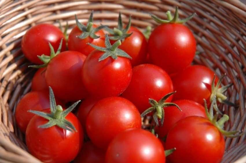 Pesë arsye pse duhet të hani domate çdo ditë