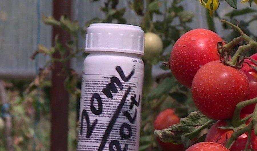 Fermerët në Shqipëri kontrabandojnë nga Serbia insekticidin e ndaluar për pemë e perime