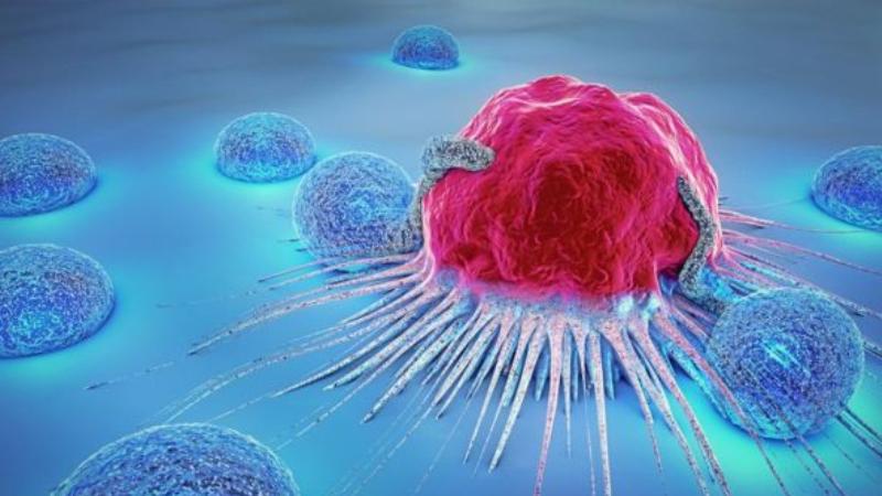 Në vendet myslimane kanceri nuk konsiderohet si sëmundje serioze