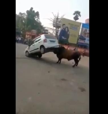 E tmerrshme: Brenda 15 minutash demi shkatërron makinën