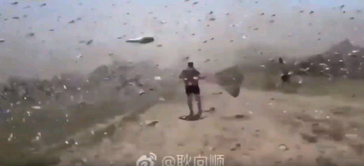 Kina, pushtim nga karkalecët, nuk mjaftonte koronavirusi