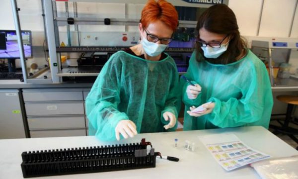 Testi i koronavirusit në kushte shtëpie, mjektë bëjnë mrekullinë