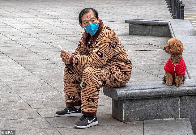"""""""Historike"""" nga Covid-19, qyteti kinez ndalon ngrënien e qenve dhe maceve"""