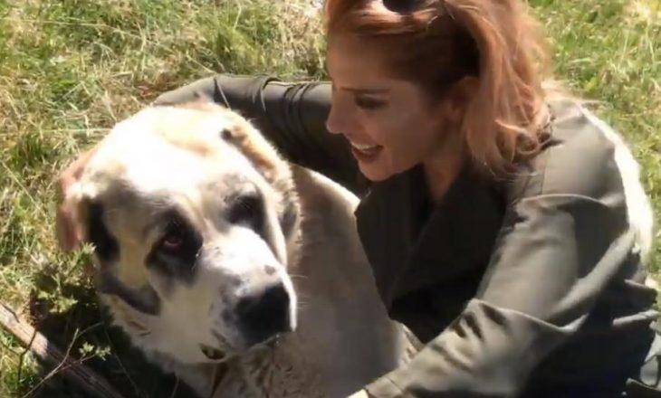 Moderatorja shqiptare rrezikon jetën gjatë xhirimeve, i sulet qeni i Sharrit