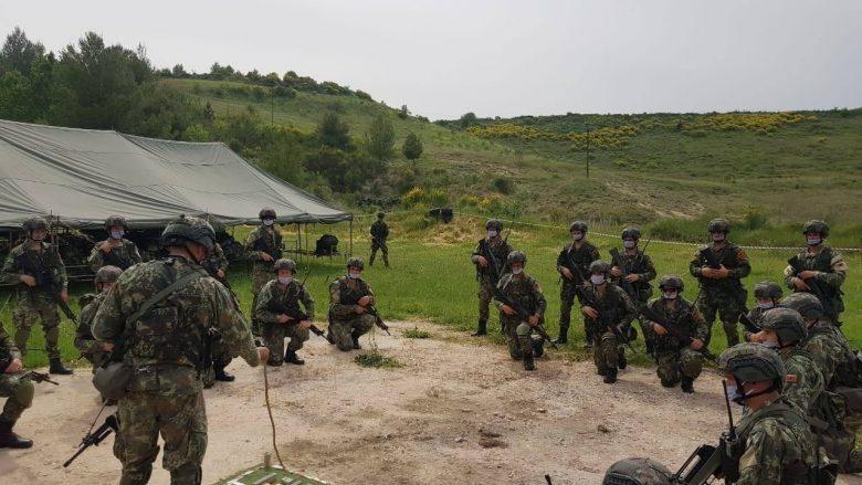 Ushtarët komando nga Shqipëria do të vijnë në Kosovë