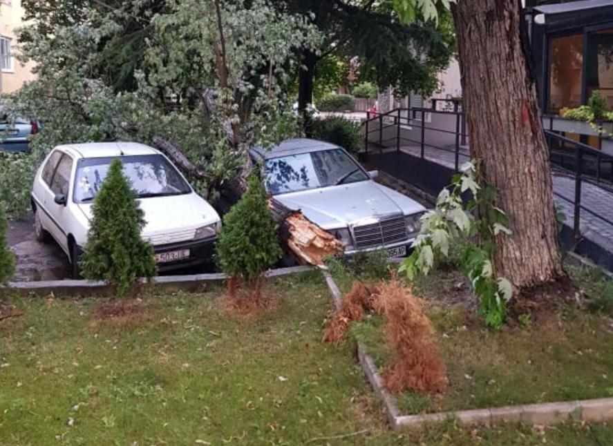 Stuhia e fortë shkul pemët në qytetin e Shkupit