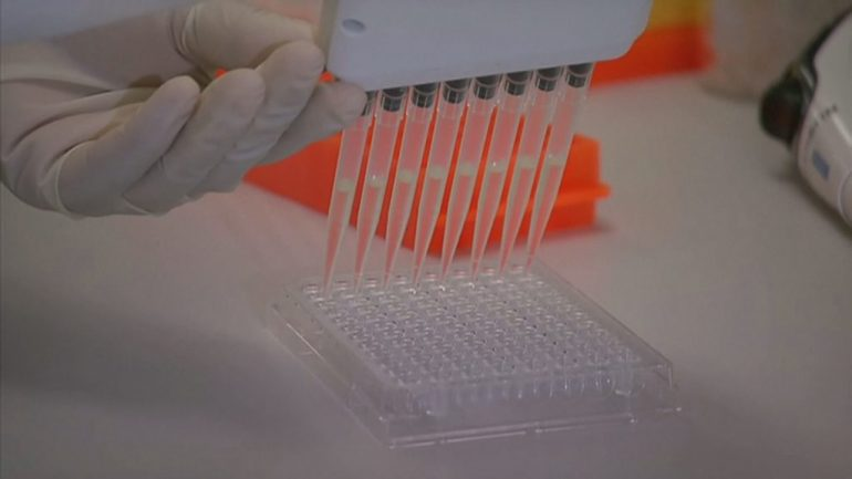 Sa zgjat imuniteti nga koronavirusi?