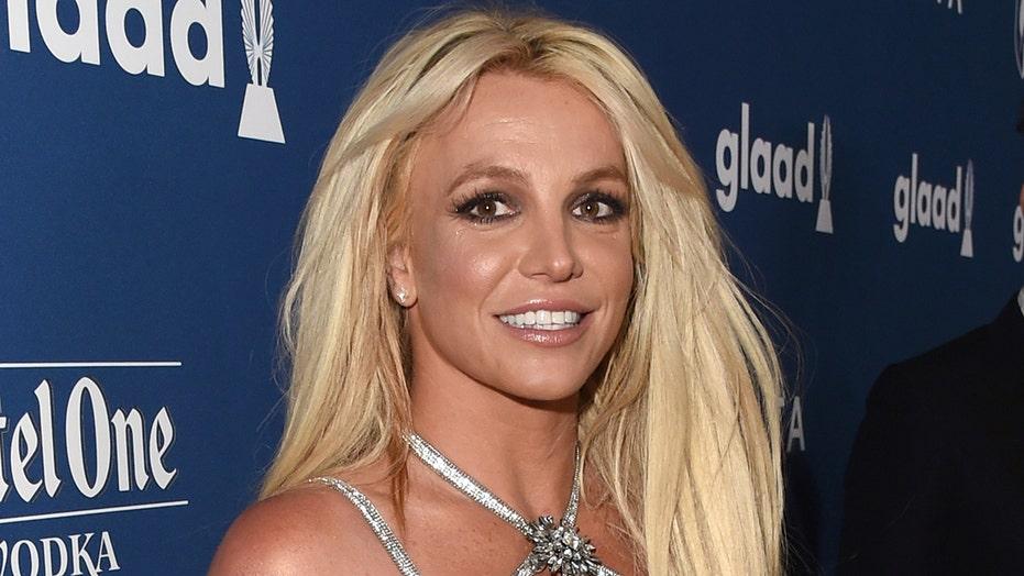 Spears me foto topless në mes të telasheve familjare