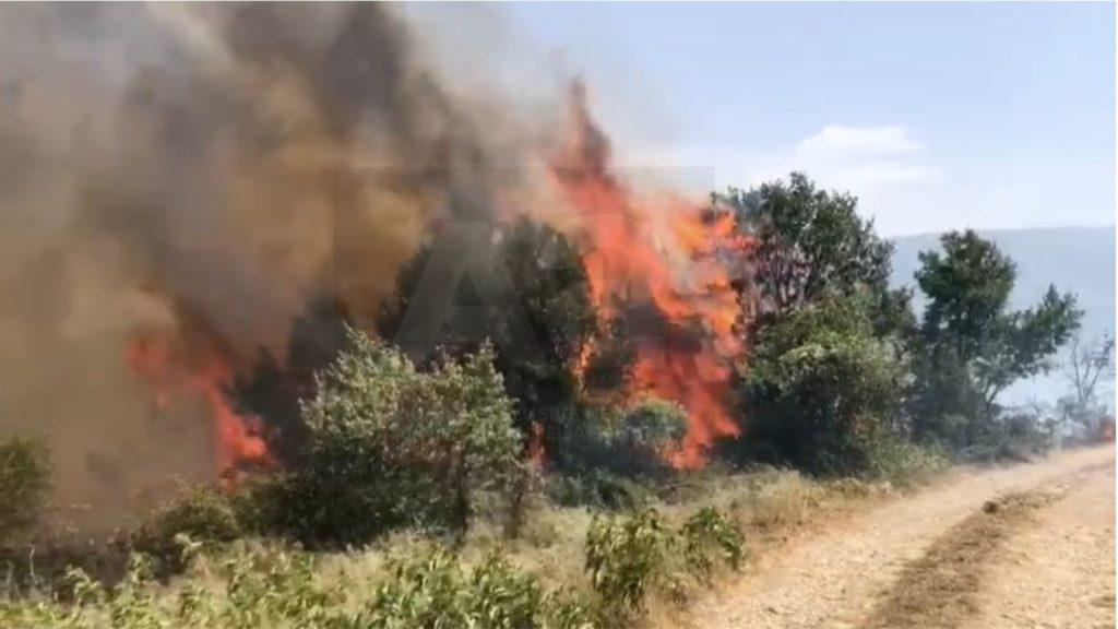 Zjarre edhe në Has të Shqipërisë