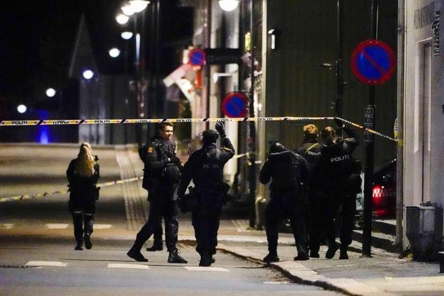 Pesë të vdekur nga sulmi me shigjeta në Norvegji